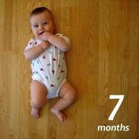 7-month update
