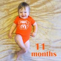 11-month update