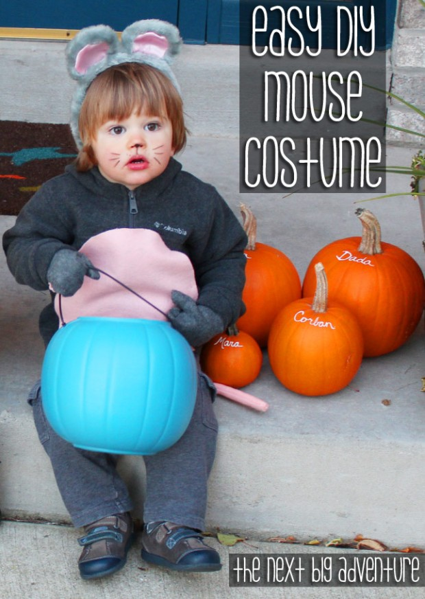 mousecostume